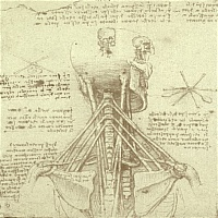 the exelon patch seminar omni orlando